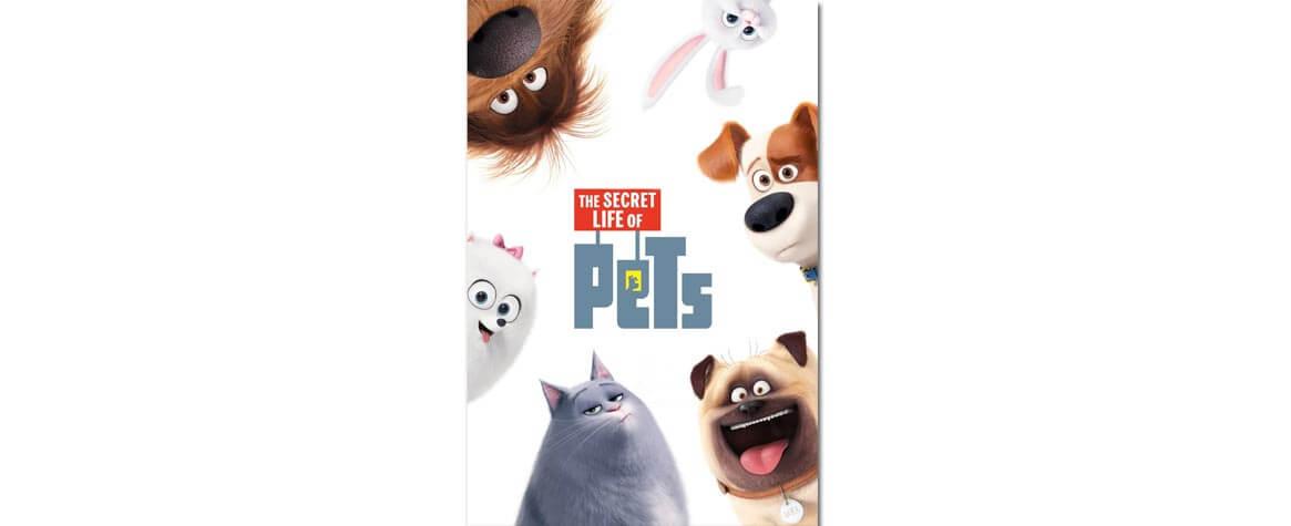 Secret Life of Pets